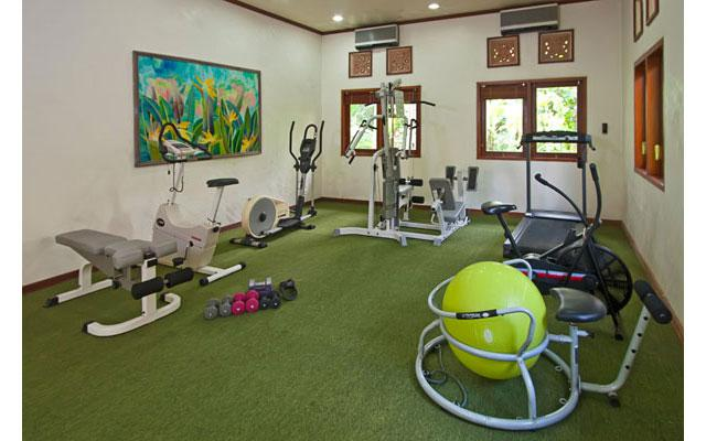 Spa Ubud - Alam Sari Spa : fitness