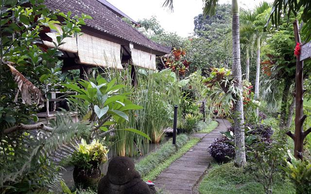 Ubud Spa - Bliss Spa  : Path way