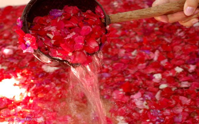 Legian Spa - Alam Anda Spa : Flower Bath