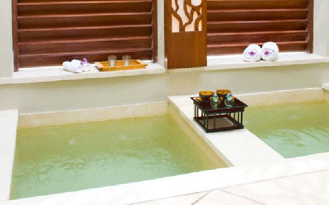 Spa Gianyar - The Anapuri Spa: Hot and Cold Plunge Pool
