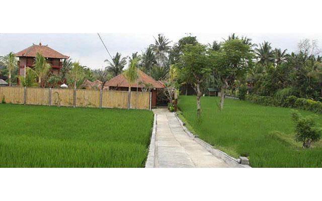Sedona Spa Ubud - Spa in the rice fields