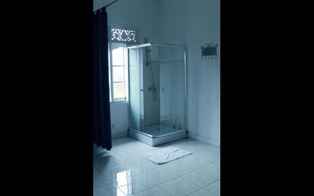 Le Grand Bleu Spa Seminyak - Shower