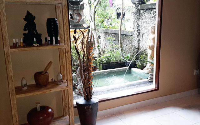 Ubud Spa - Skin Spa Sanggingan : View from Inside