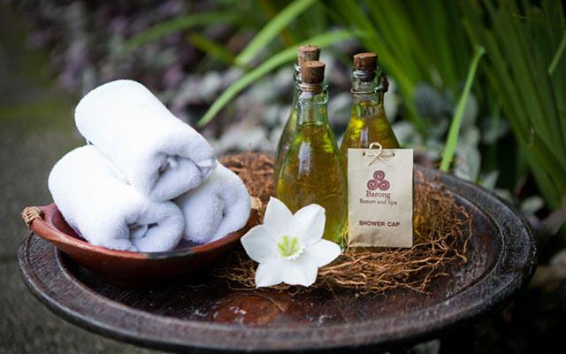 Ubud Spa - Barong Spa : Amenities
