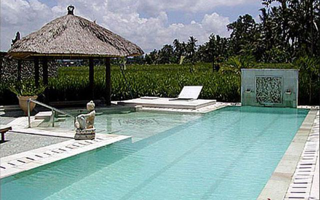 Ubud Spa - Spa Hati : Lap pool